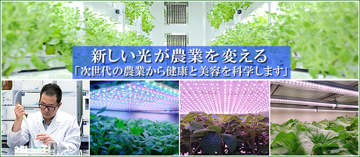 New Technology Lighting Changes Agriculture [Vegetable Factories Utilizing HEFL]